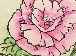 PlantLove-BarbPoppy