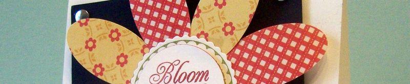 Ck bloom where ur planted- Carolyn King- sneak peek