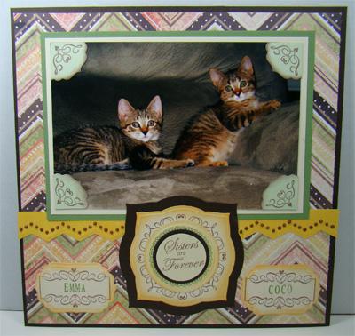 Catsisters1