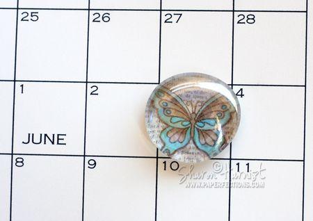 055-ButterflyCalPeb2-SH