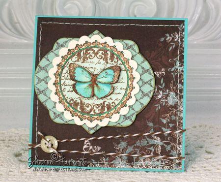 JRC_064 ButterflySharon