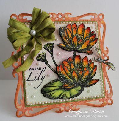 Frog & Water Lily Marisa Job