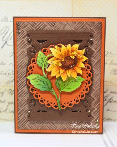 SunflowerVintageLabelsFiveHeidiBlankenship1