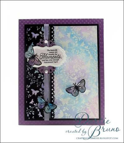 ButterflyMoments2a