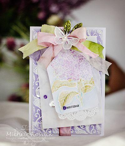 Hydrangea Blooms Michele Kovack
