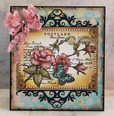 Rose Postcard Background Marisa Job
