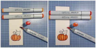 Pumpkin color 2