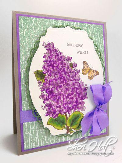 Sheri Holt Lilac Blossoms