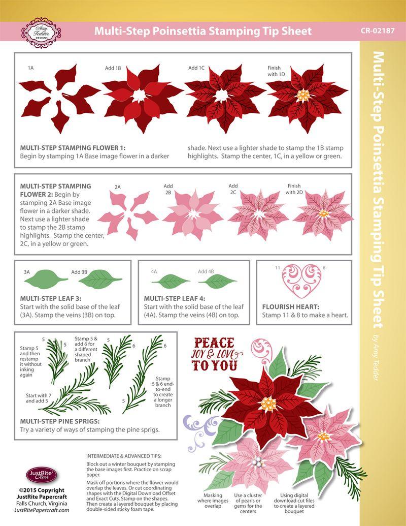 JR_CR-02187_Multi-Step_Poinsettia_TIP_SHEET
